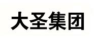 陕西大圣网络科技有限公司