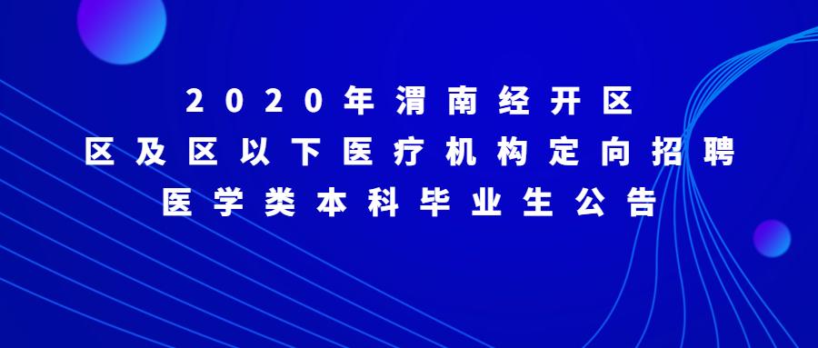 2020年渭南经开区区及区以下医疗机构定
